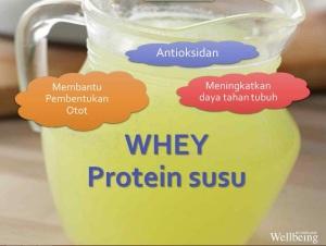 Whey Protein Susu Kandungan Nutrishake