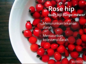 Rose Hip Kandungan Nutrishake